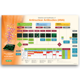 Detection and Identification of Antinuclear Antibodies (ANA)