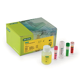 iQ-Check Campylobacter kit #357-8135