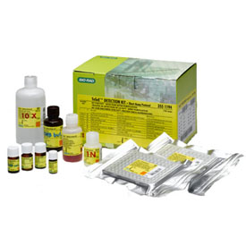 TeSeE SAP Detection Kit #355-1194