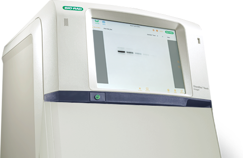 ChemiDoc Touch Imaging System