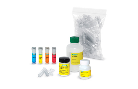 IDEA Kit — Inquiry Dye Electrophoresis Activity - DNA Analysis Kits and Agarose Gel Electrophoresis Kits