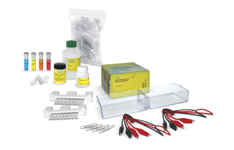 STEM Electrophoresis Kit - DNA Analysis Kits and Agarose Gel Electrophoresis Kits