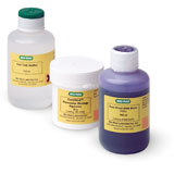 Small Fast Blast™ DNA Electrophoresis Reagents Pack #166-0450EDU
