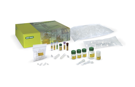 PCR Amplification Kits - Fish DNA Barcoding Kit