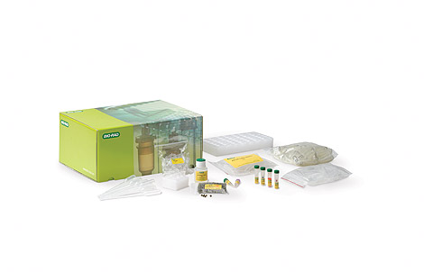 GMO Investigator Real-Time PCR Starter Kit