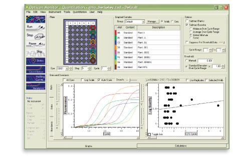 Sample Real-Time PCR Results