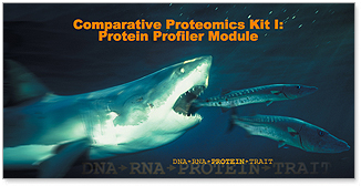 Comparative Proteomics Kit I: Protein Profiler Module