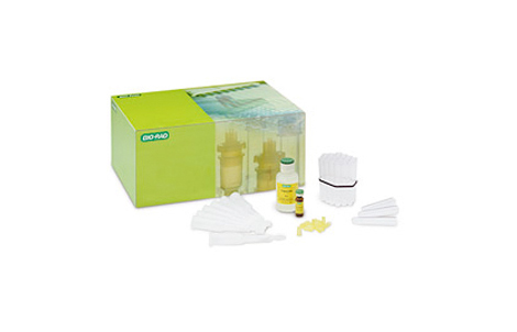 Size Exclusion Chromatography Kit