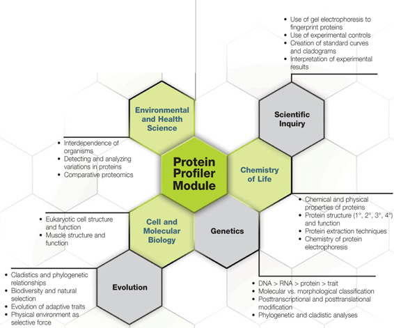 Protein Profiler Curriculum Fit