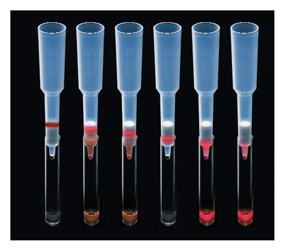 Series of 6 size exclusion chromatography columns showing the separation of Vitamin B12 and hemoglobin