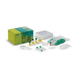 Biofuel Enzyme Kit