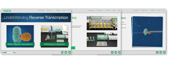 Reverse Transcription Training Module