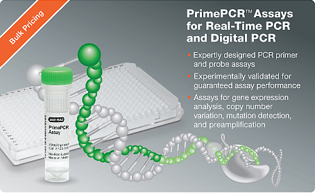 PCR Primers for Gene Expression Assays