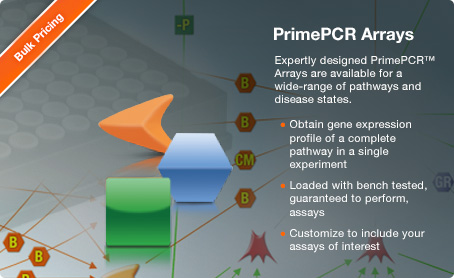 PrimePCR Assays - Pathway Panels