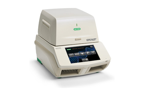 What is real-time pcr (qpcr)? | lsr | bio-rad.