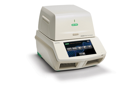 CFX384 Touch™ Real-Time PCR Detection System