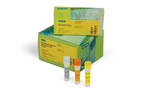 One-Step RT-ddPCR Advanced Kit for Probes