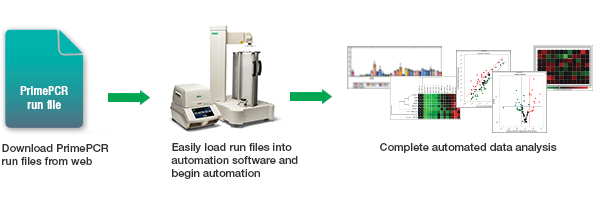 Automated PCR Workflow
