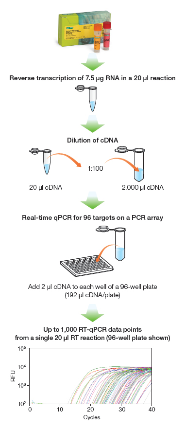 iScript™ Advanced cDNA Synthesis Kit for RT-qPCR Workflow
