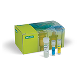 SingleShot™ Cell Lysis Kit