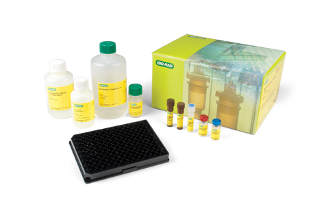 Bio-Plex Pro Human MMP and TIMP Multiplex Assays