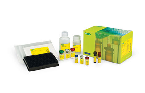 Bio-Plex Pro RBM Apoptosis Assays - Bio-Plex Suspension Array