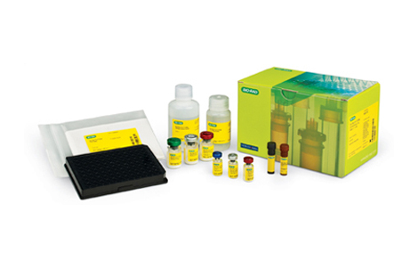 Bio-Plex Pro™ RBM Rat Kidney Toxicity Assays