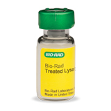 EGF-Treated HeLa Lysate (#171-YZ0002) - Bio-Plex Pro Cell Signaling Assay