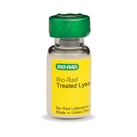VEGF-Treated HUVEC Lysate (#171-YZ0010) - Bio-Plex Pro Cell Signaling Assay