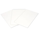 Thick Blot Paper #170-4085
