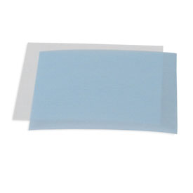 Sequi-Blot PVDF/Filter Paper Sandwiches #162-0217