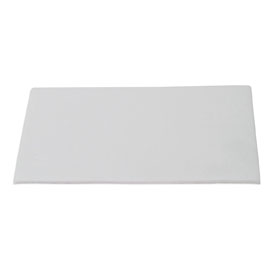 Extra Thick Blot Paper #170-3958