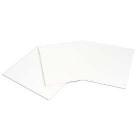 Extra Thick Blot Paper #170-3968