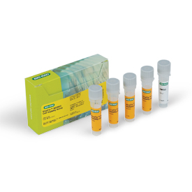 VivaFix™ 583/603 Cell Viability Assay