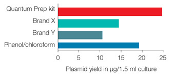 High Plasmid Yield