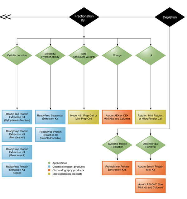 Protein Fractionation and Sample Depleation Flowchart