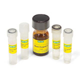 ReadyPrep™ 2-D Cleanup Kit for IEF, 5 preps