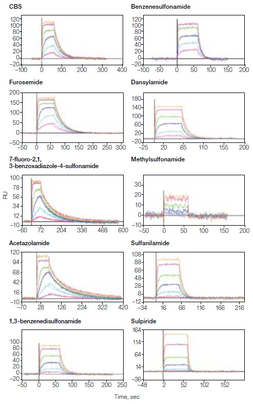 Plots of SPR antibody binding sensorgrams