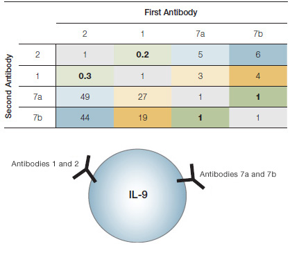 Schematic illustration of antibody binding epitopes and epitope mapping table