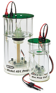 Model 491 Prep Cell and Mini Prep Cell