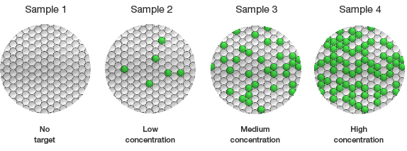 The number of positive droplets corresponds to the concentration of target in the sample