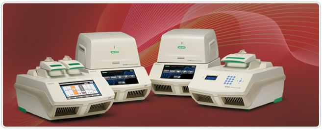 Photo of Bio-Rad PCR thermal cyclers