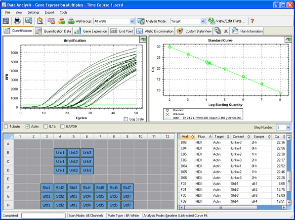 Quantification window in CFX Manager software