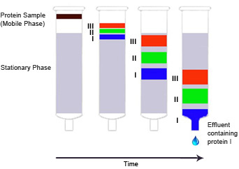 Visit the Liqui... Paper Chromatography Diagram Stationary Phase