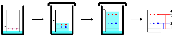 an analysis of the method of chromatography