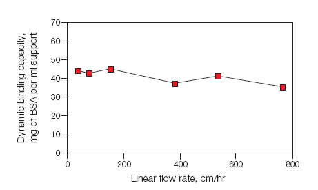 Dynamic protein binding capacity as a function of linear flow rate