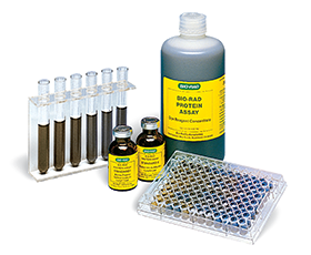 Bio-Rad Bradford protein assay kit
