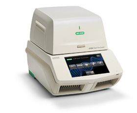 Real-time PCR systems for multiplex PCR