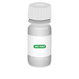 Adrenal Antibody Positive Control