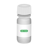 Endomysium Antibody Positive Control